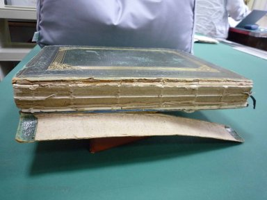 Album Spine Before Conservation