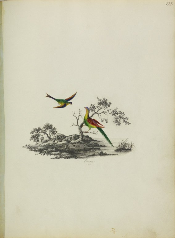 Painting of two birds